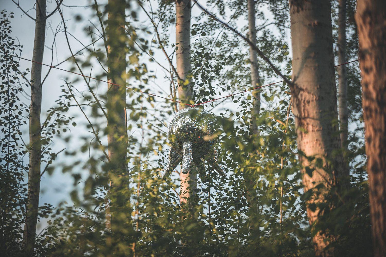 Diskokugel, die in den Birken hängt