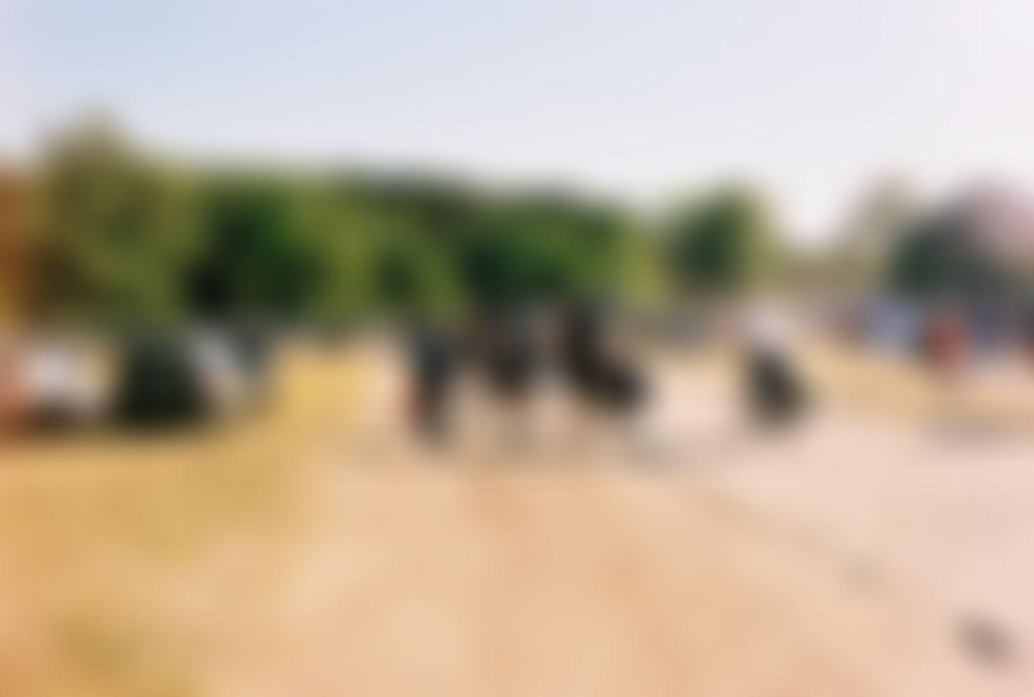 Viele Leute laufen mit ihren Rädern Richtung Festivaleingang, rechts neben ihnen sind Zelte und links neben ihnen parkende Autos.