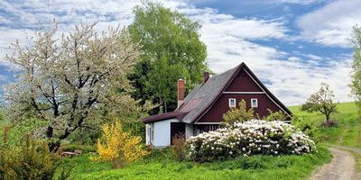 Preparing your home for sale? Don't forget the garden!