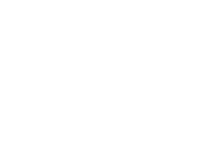 disruption-diaries-logo