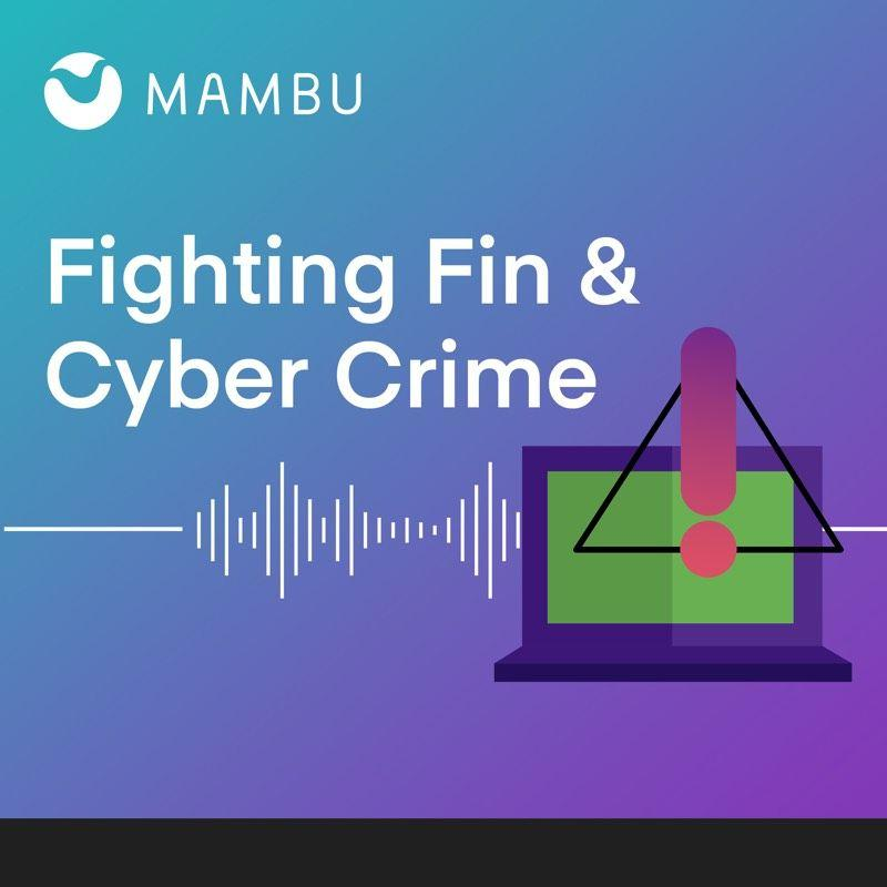 Fighting Fin & Cyber Crime