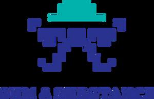 Sum & Substance logo