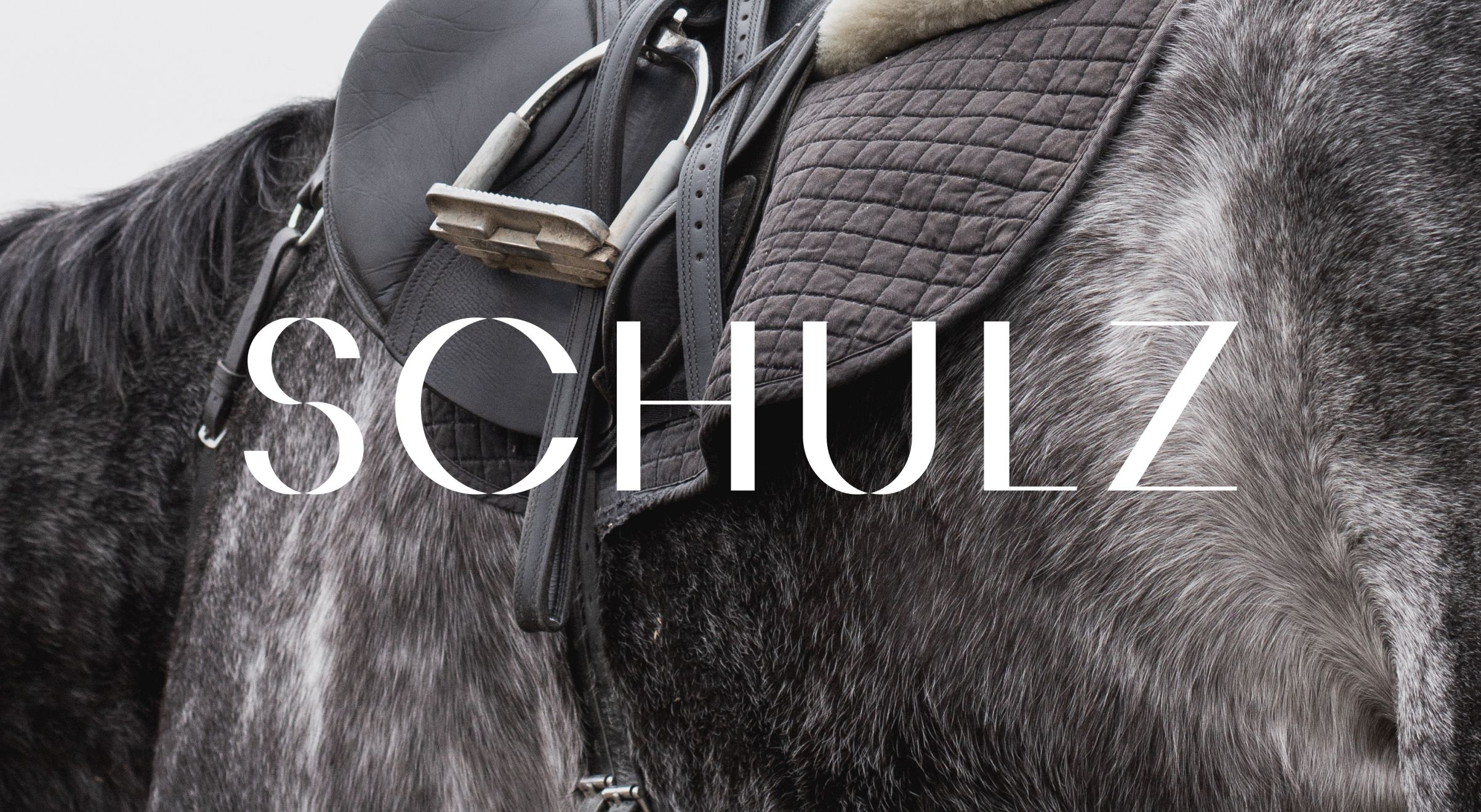 schulz horse