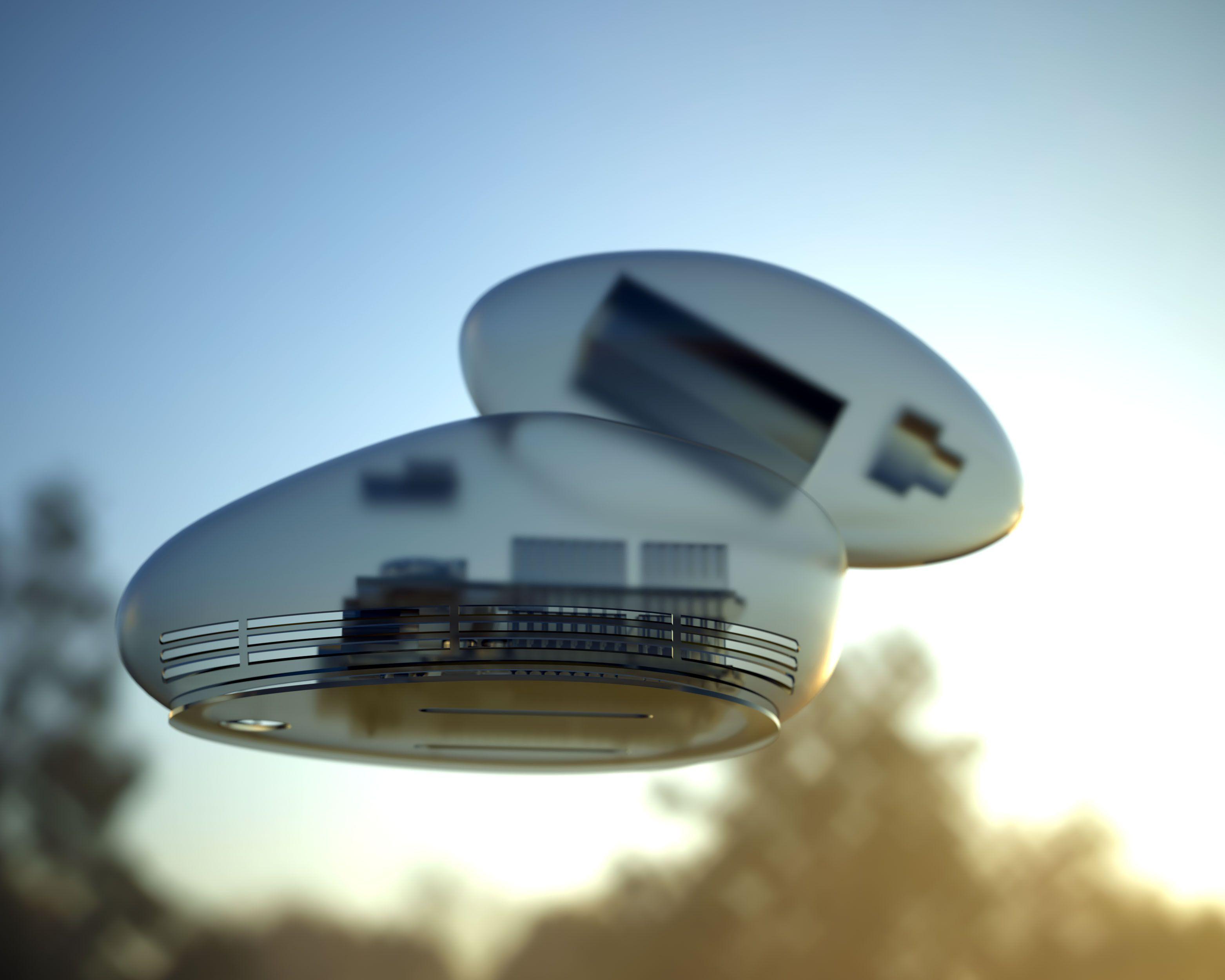 3D rendering of BirdyBird with a transparent shell.