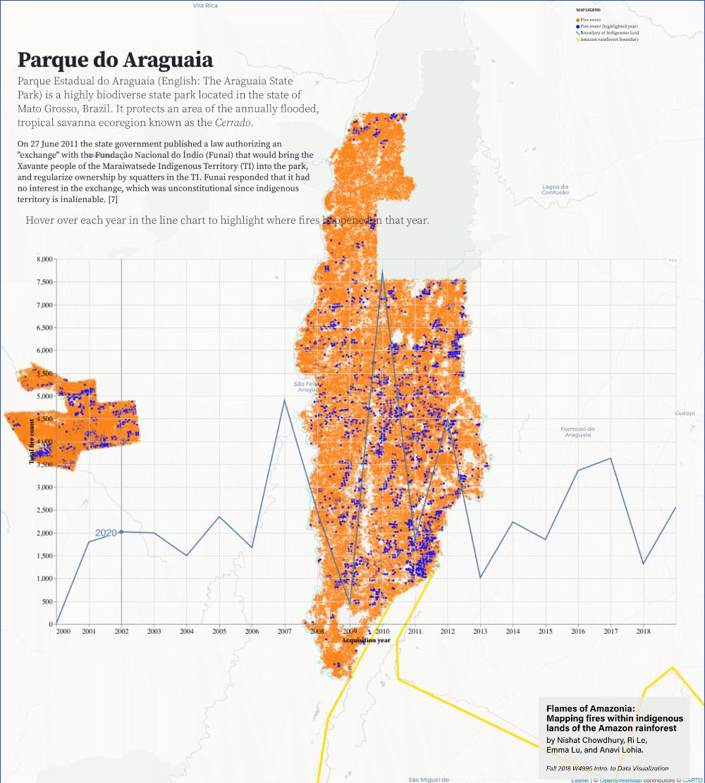 Flames of Amazonia