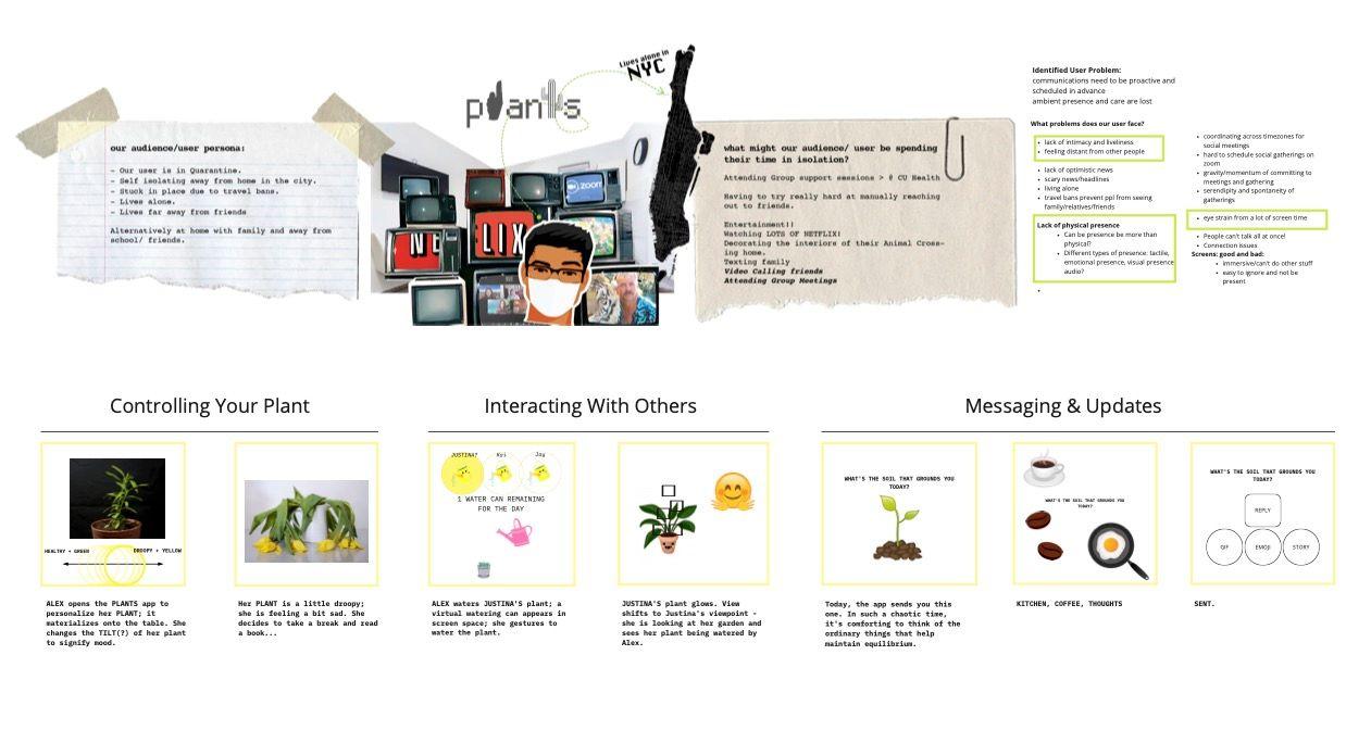 Storyboard for Plants AR app.