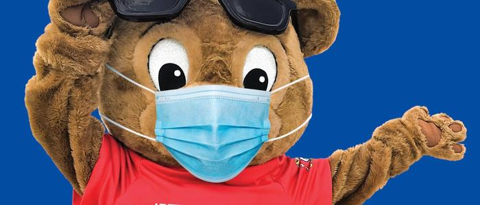 Buddy Bear with a Facemask