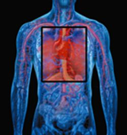 The Science of Cardiac Safety