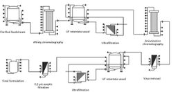 An Economic Analysis of Single-Use Tangential Flow Filtration for Biopharmaceutical Applications