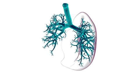 Taking a Breath: Advances in Inhaled Biologics; Image: mybox/Stock.Adobe.com