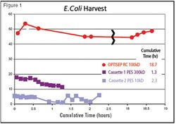 Increasing Efficiency and Throughput with Separation and Purification