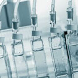 Safety Drives Innovation in Animal-Component-Free Cell-Culture Media Technology