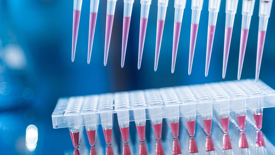 Developing Cell and Gene Therapy Methods; image: luchschenF/Stock.Adobe.com