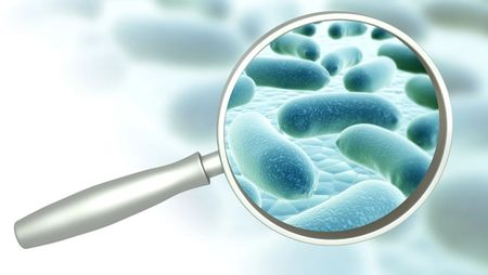 Complex Modalities Require More Sensitive Adventitious Agent Testing. Image: frenta/Stock.Adobe.com