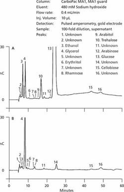 Application of Ion Chromatography with Electrochemical Detection in Optimization and Control of Fermentation and Cell Culture