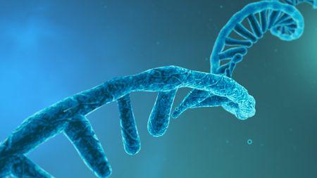 RNA's Expanding Horizons; image: CROCOTHERY - Stock.adobe.com