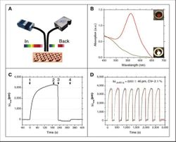 Label-Free and Labeled Technology for Protein Characterization and Quantitation
