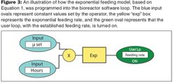 Developing an Automatically Controlled Feeding Process in an E. coli Fermentation Process for Recombinant Protein Production
