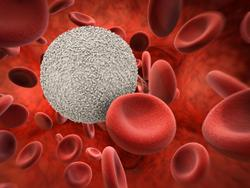 Epcoritamab Monotherapy Demonstrates Promising Early Findings for Patients With R/R B-Cell non-Hodgkin Lymphoma