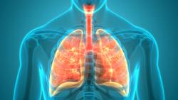 Addition of Plinabulin to Docetaxel Produced Positive Outcomes in Second- and Third-Line EGFR Wild-Type NSCLC