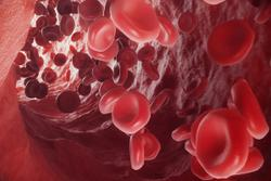 Late Mortality Risk Decreases Among Those Who Undergo Allogeneic Blood or Marrow Transplantation at Younger Age