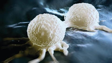 Advancing the Field of Breast Cancer Care