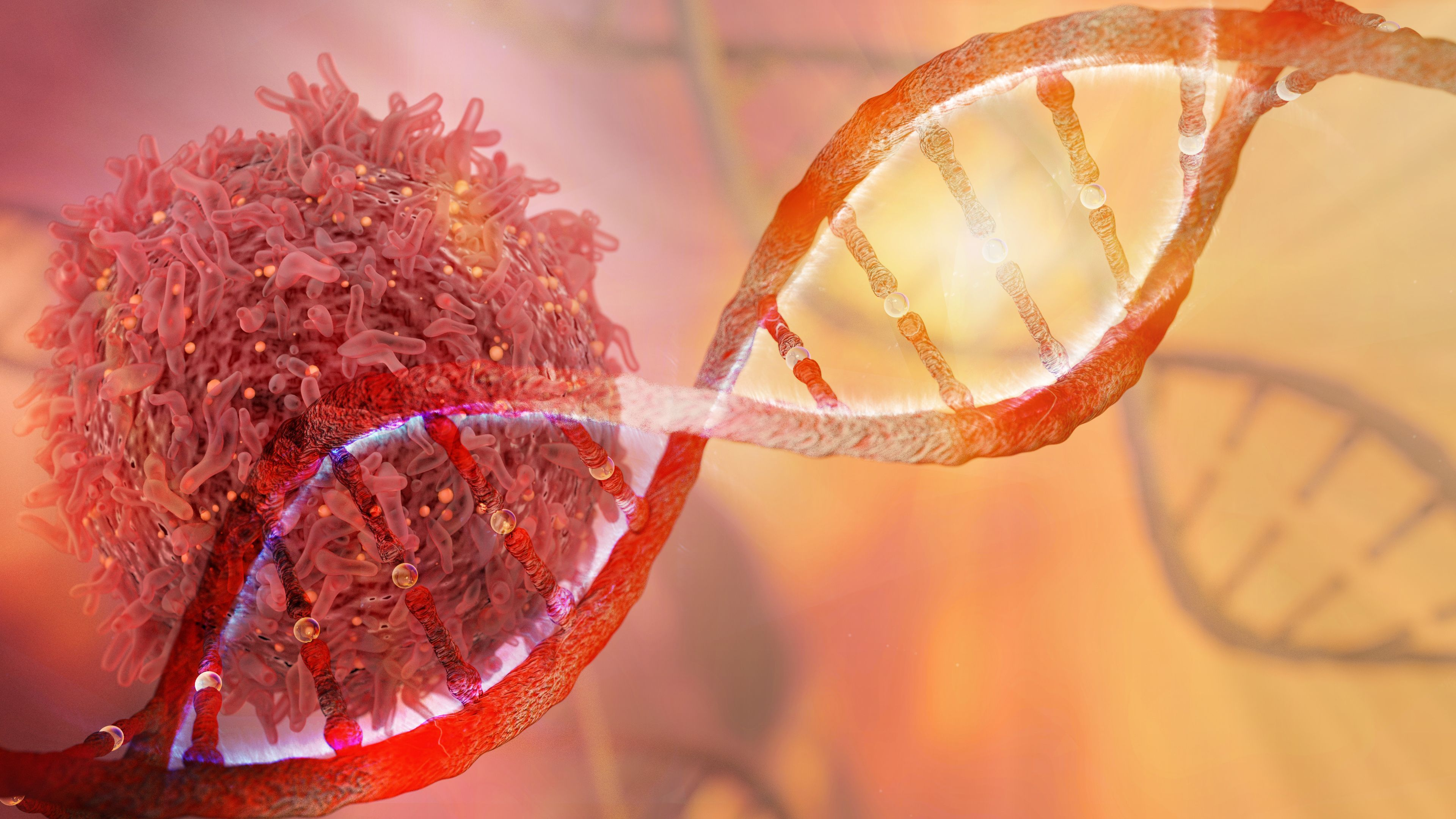 Targeting treatment is the key to success in oncology