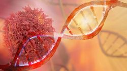An Evolving Relationship Between Medical Oncologists and Genetic Counselors in Prostate Cancer