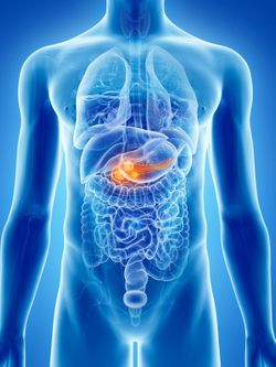 Study Identifies New Biomarker Which Could Predict Response to CD40 Immunotherapy in Pancreatic Cancer