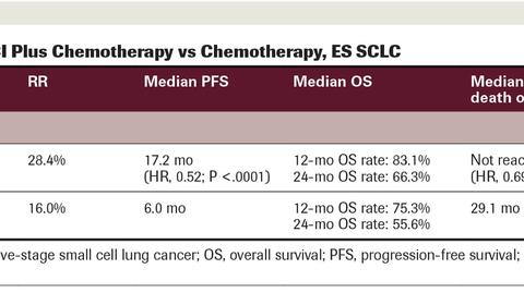 Immunotherapy in Advanced Lung Cancer