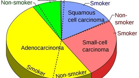 Drugs in the Pipeline: Non-Small-Cell Lung Cancer