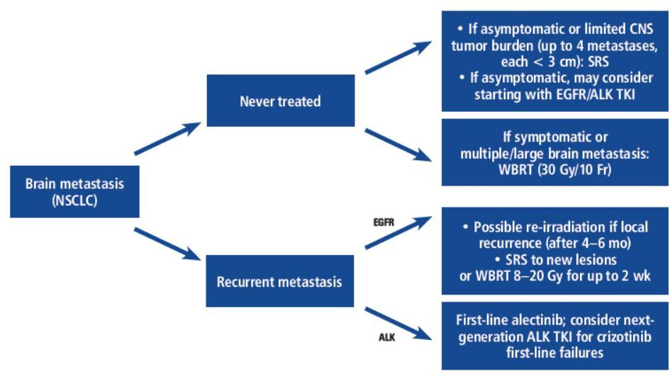 Systemic Treatment Options For Brain Metastases From Non Small Cell Lung Cancer