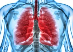 Updated Data Support Significant Clinical Benefit of Entrectinib in ROS1 Fusion+ NSCLC