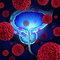Antitumor Activity Continues With Olaparib Plus Pembrolizumab Combo in mCRPC
