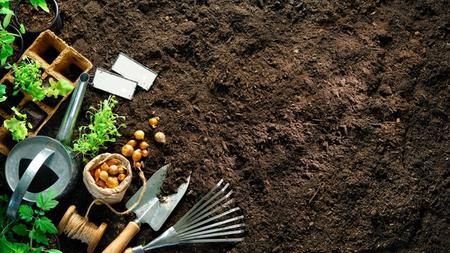 Gardening Tools and Fresh Soil