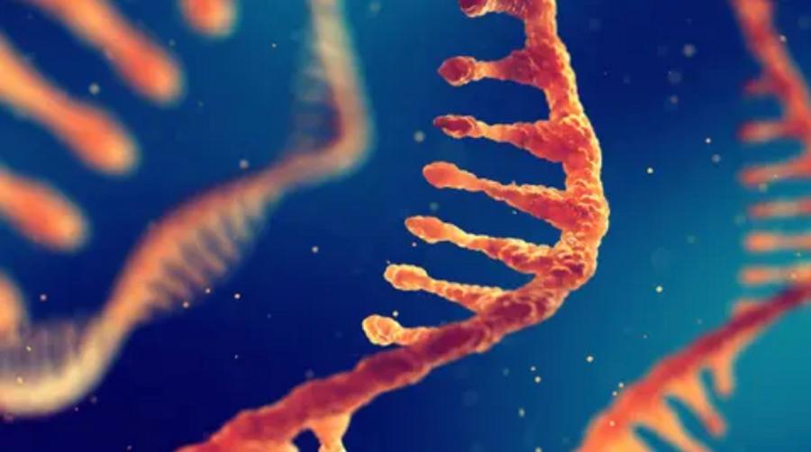 DNA strands against a blue background