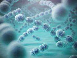 Non-ventilator Hospital-acquired Pneumonia: An Emerging Threat