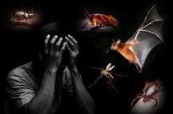 Virus Spillover and Emerging Pathogens Pick Up Speed