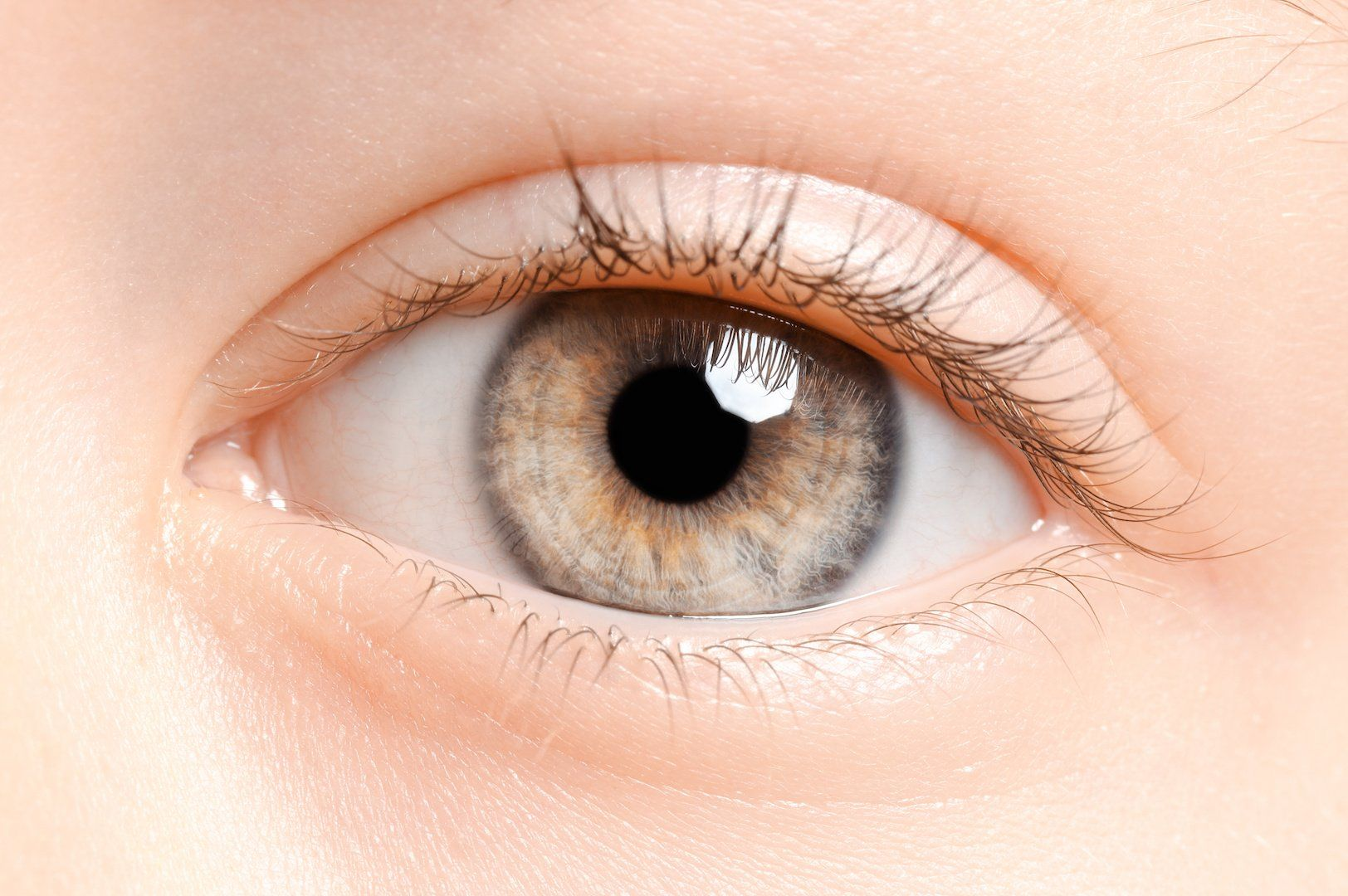 Ocular emergencies: What pediatricians and frontline physicians need to know