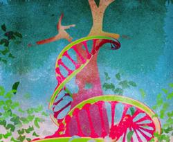 Looking Forward: Patients With Genetic Mutations Are Empowered to Make Plans