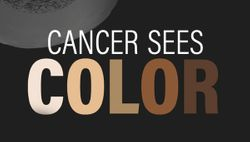 Cancer Sees Color: Investigating Racial Disparities in Cancer Care