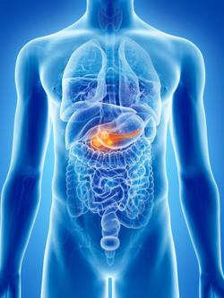 Phase 1 Trial Begins for New Treatment Delivery Strategy in Pancreatic Cancer