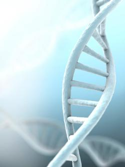 Novel Procedure Considered an 'Acceptable Method' to Preventing Transmission of Hereditary Cancer Mutations to Children