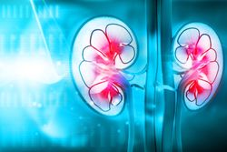 Keytruda-Inlyta Combo Continues to Improve Survival in Kidney Cancer