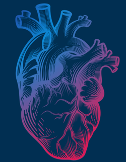 Death From Heart-Related Causes May Affect Cancer Survivors More Than the General Population