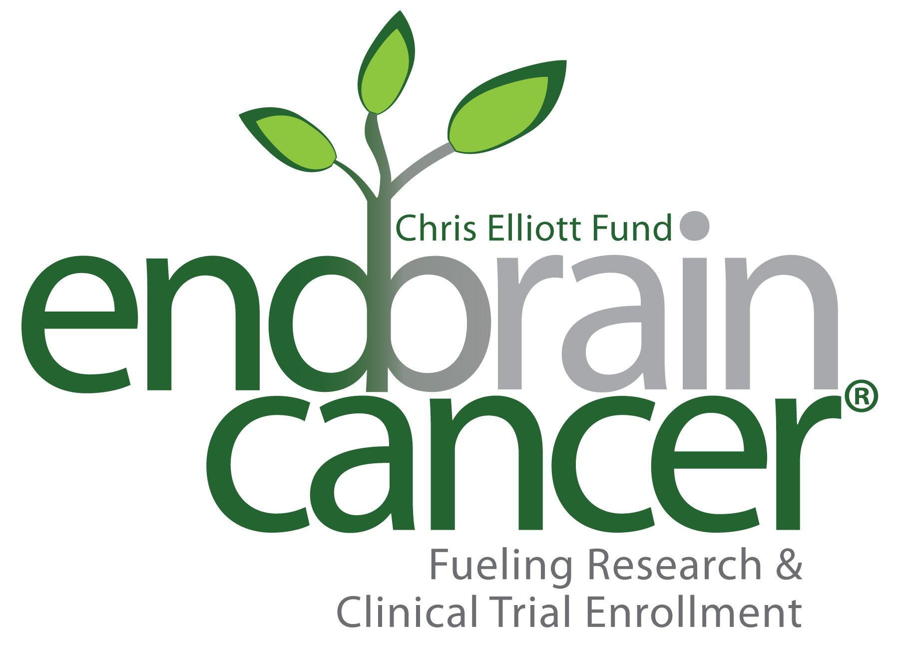 EndBrainCancer logo