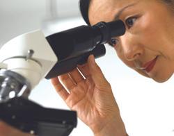 Researchers Discover a Culprit Behind Aggressive Liver Cancer