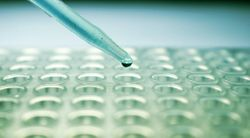 Lung Cancer Advocacy Groups Play Important Role in Biomarker Testing