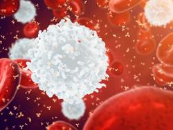 The Power of the Immune System: New Treatment for Painful Blood Cancer Side Effect