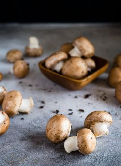 Eating Mushrooms May Reduce Cancer Risk